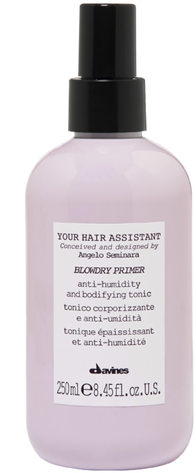 Blowdry Primer Your Hair Assistant